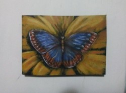 "Day 98: ""Butterfly"", acrylic on MDF board, 8,5cm x 12,5cm (sold)"